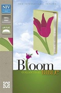 Cheerful tulip soft-tone Bible with revised NIV text in a handy compact size. Boxed. £19.99