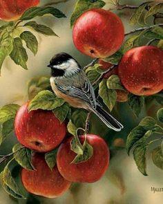 Схема вышивки «воробей и яблоки» - Схемы вышивки - Redfox777 - Авторы - Портал «Вышивка крестом»