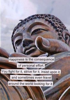 happiness -- fight for it, strive for it, insist upon it // buddha