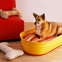 A galvanized tub gets a new look with some shiny yellow and red paint. Add a plump pillow and you have a comfy dog bed. Remove the pillow and the bed becomes a bathtub./