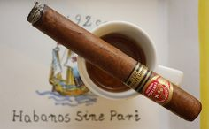 More than 3333 followers - thanks! Partagas...