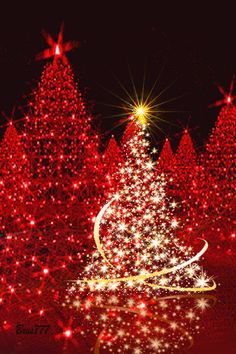 GORGEOUS...Bella Donna stellarsky Best Christmas Lights #Tumblr bestchristmaslights.tumblr.com