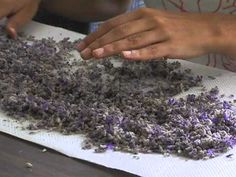 How to Make Lavender Oil