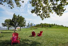 Governors Island Reopens July 15 for Summer 2020 Fun Hot Dog Restaurants, Summer In Nyc, Hand Washing Station, Stuff To Do, Things To Do, Joe Coffee, Brooklyn Bridge Park, Lower Manhattan, July 15