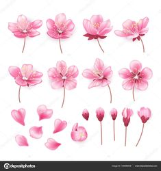 31 Super Ideas for japanese cherry blossom tree tattoo i want - # Apple Tree Blossoms, Cherry Blossom Flowers, Pink Blossom, Blossom Trees, Pink Flowers, Design Floral, Motif Floral, Tattoo Cherry, Cherry Blossom Tattoos
