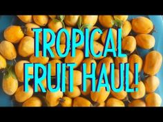 ▶ Do You Ever Get Tired of Fruits & Vegetables on an 80/10/10 Raw Vegan Diet? - YouTube