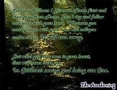 Seek out STILLNESS