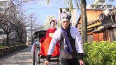 Japan: Fascinating Diversity (Omotenashi: Japanese Way of Hospitality) (...