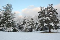 Patsy Ingle Phillips shares images she took in February 2012 after a snow storm in Southwest Virginia.