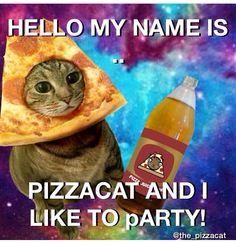 Pizzacat sayshello