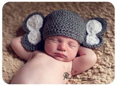 Crochet Elephant hat by My Simply Sweet Little Boutique  www.facebook.com/MSSLB  Photo by: Little Gifts From God Photography