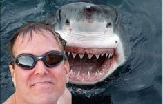 Shark Selfie... that's fricken scary.