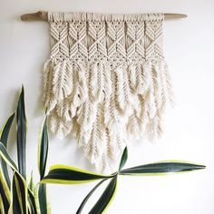 The last round of feathers sold out quickly, thank you all very much for all the love ❤️. A new round of feathers will be coming this week, along with a few new basket planters