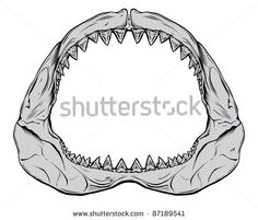 Shark jaw Free vector for free download about (4) Free vector in ai, eps, cdr, svg format .