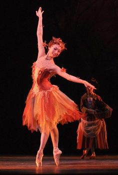 I love the autumn colors in this dress, but I wish it was higher up in the bodice. Beautiful tulle skirt, though. ;)