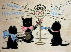 Cat band