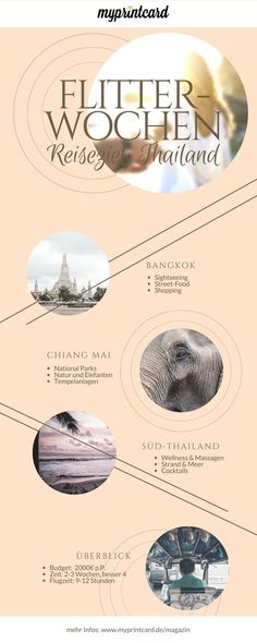 Where to go for the honeymoon? We show you Thailand as a destination for your honeymoon. Insider tips and itinerary can be found in the magazine Source by myprintcard Bangkok, Wellness Massage, Parks, Thailand Wedding, Wedding Planning Tips, Honeymoon Destinations, Where To Go, Elephants, Tips And Tricks