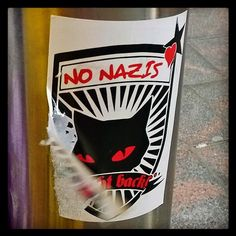 #nonazis #einatseja #kylläkissatietää #kissa  #cat #catknowsbest #pysäytärasismi #stopnazis