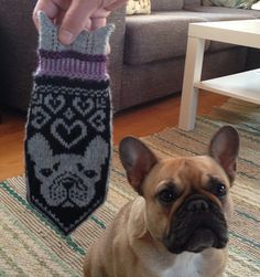 Ravelry: Handwarming Frenchies (French Bulldog Mittens) pattern by JennyPenny