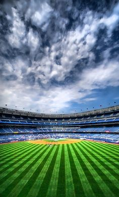 No grass was ever greener.  YANKEE STADIUM