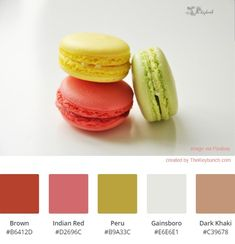Macaroon is decorated beautifully with green, yellow and coral color