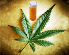 Cannabis Exerts Powerful Neuroprotective Effects And May Soon Be Used In Stroke and Cardiac Emergencies