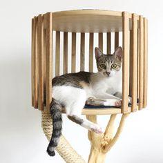 Toca - Arranhador para gato