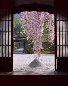 Kōdai-ji in Kyoto; photo by kyoto, ka. Japanese Temple, Japanese House, Japanese Geisha, Japanese Kimono, Aesthetic Japan, Japanese Aesthetic, Beautiful World, Beautiful Places, Japanese Landscape