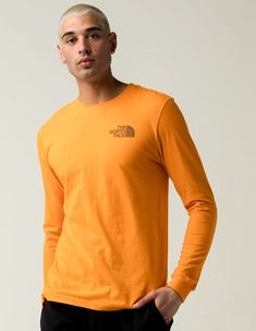 THE NORTH FACE TNF Sleeve Hit Mens T-Shirt