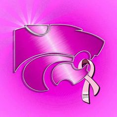 October is Breast Cancer Month.  Find a Cure!