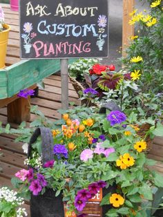 Ask us about Custom Plantings! Plant Land, Kalispell, MT