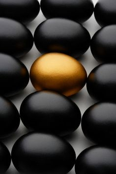 Black and gold egg photo, Business book cover art