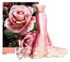 """""""Rose contest 2"""" by nonanana ❤ liked on Polyvore featuring Versace and Tommy Hilfiger"""
