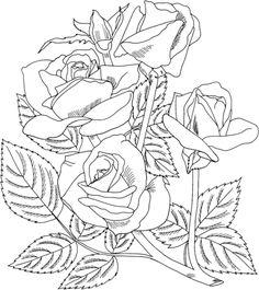 Rosa Grandiflora dell'Arizona Disegno da colorare