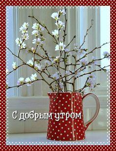 Good Morning, Nature, Red, Random Stuff, Bom Dia, Buen Dia, Bonjour, The Great Outdoors, Buongiorno