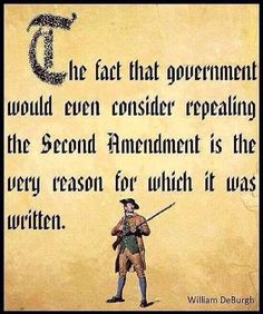 Read the Constitution, The Bill of Rights and our Declaration of Independence. Educate yourselves PATRIOTS! The Words, Mantra, Motto, Just In Case, Just For You, Gun Rights, Out Of Touch, Thing 1, Molon Labe