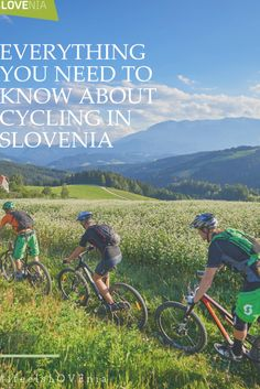 #slovenia Slovenia travel tips for biking enthusiasts: Everything you need to know about cycling in Slovenia. The dynamic landscapes of Slovenia, with their countless natural beauties, are ideal for a biking holiday. Biking routes, destinations and more. #biking #cycling #traveltips #travelguide #europe Biking in Europe European Destination, European Travel, Cycling Art, Road Cycling, Cycling Tips, Indoor Cycling, Cycling Workout, Bike Workouts, Swimming Workouts