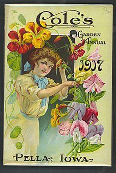 Company Name: Cole's                                                                               Garden Annual (1917)