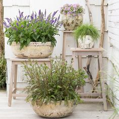Gartenlaube Barnacle Rimmed Bowl How to shop for jewelry and watches online These days it seems as i Outdoor Rooms, Outdoor Gardens, Outdoor Decor, Winter Garden, Porch Decorating, Decorating Ideas, Container Gardening, Indoor Gardening, Garden Inspiration