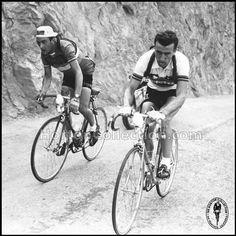 Tour de France 1955,  Gaul-Bobet, 17 etapa, dos reyes de la carretera,