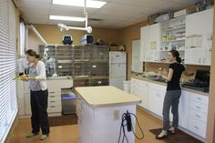 Fla. veterinary students learn practice management skills through new externship - DVM