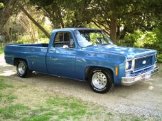 73 Chevy truck Money pit, but the looks made up for it.