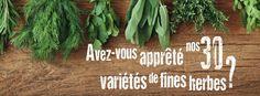 Nouvelle campagne 2015, avec un focus sur nos producteurs et marchands de fines herbes. Herbs, Rural Area, Herb, Medicinal Plants