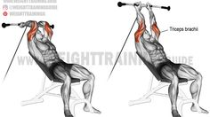 Incline cable triceps extension