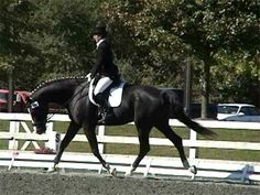 Stretching a horse's top line increases suppleness, builds strength in the back and helps prevent injury. Sally Amsterdamer shows you how.