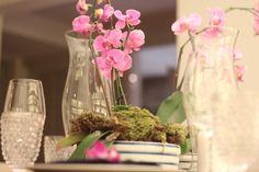 arranjo orquídeas