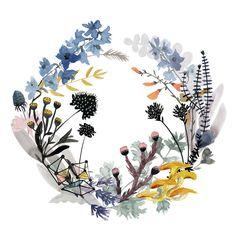 wreath7.jpg  |  (by Katie Vernon)