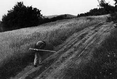 Vizovice, Moravia, 1988 - by Vojta Dukát (1947), Czech