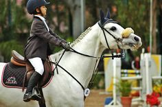 Show kids: she's Bella and her horse milquetoast, today they are all showing off their skills in the entries for the rosè peak grand pri
