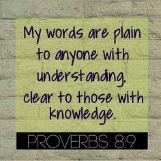 Proverbs 8:9